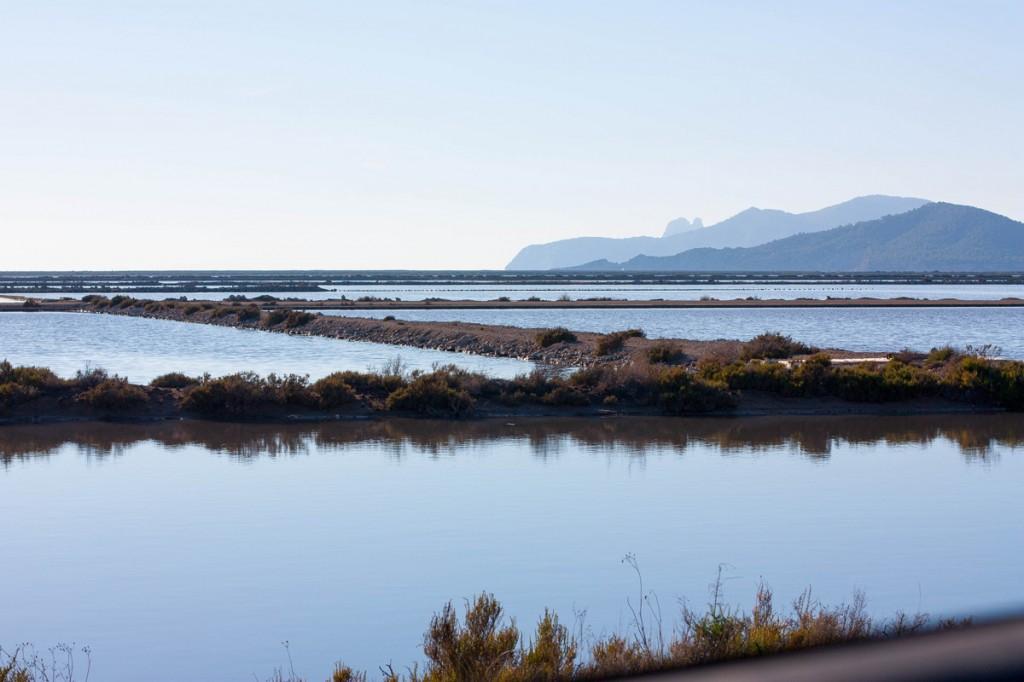 Estanques de Ses Salines Ibiza